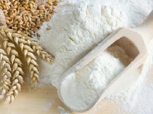 Ăn bột mì có giúp người béo giảm cân tốt hay không?