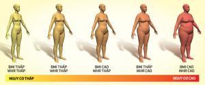 Tỉ lệ eo - hông, chỉ số của sức khỏe