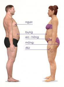 Tiêu chí chọn thuốc giảm mỡ bụng cho nam và cách dùng