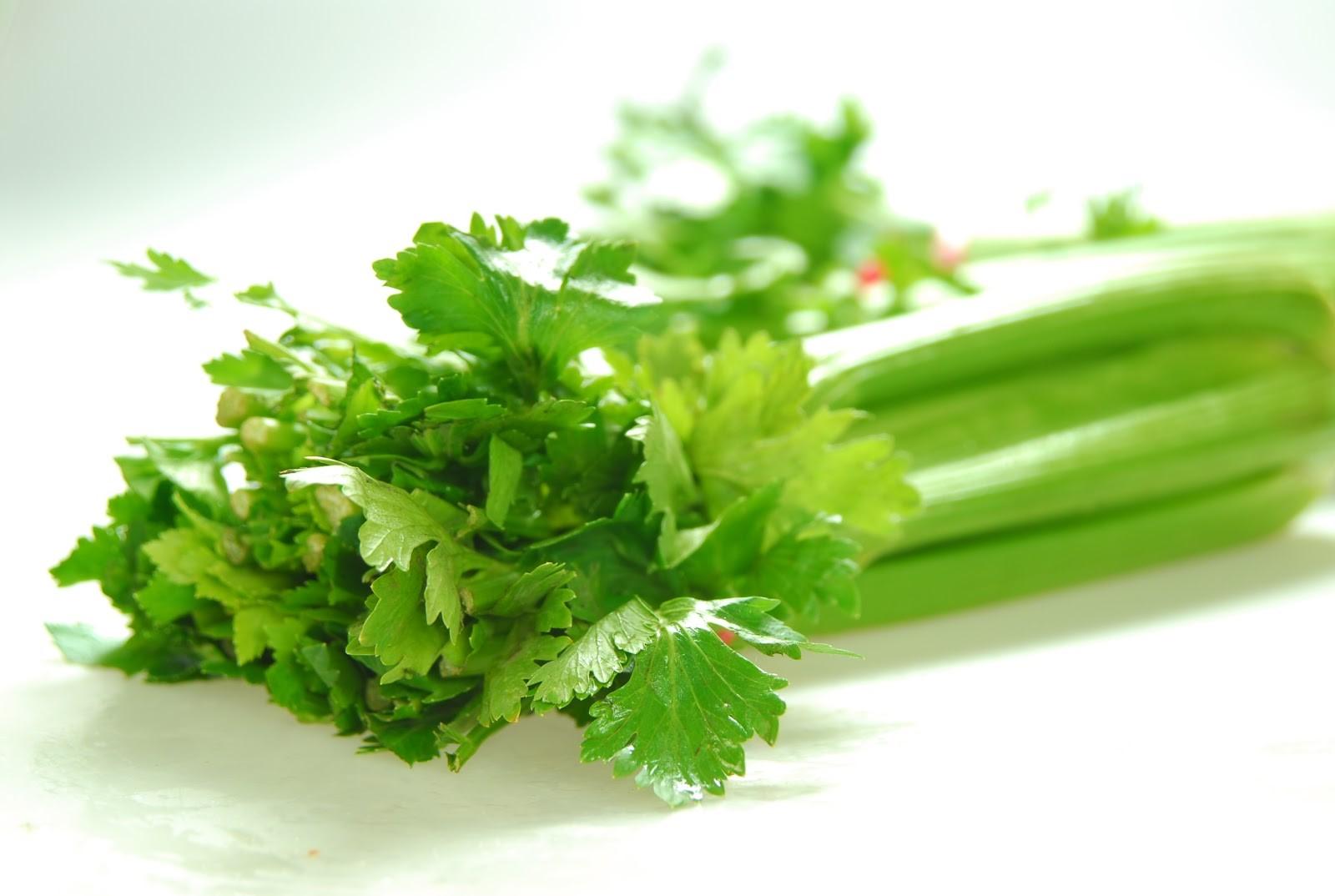 rau củ giảm cân nhanh - rau cần tây