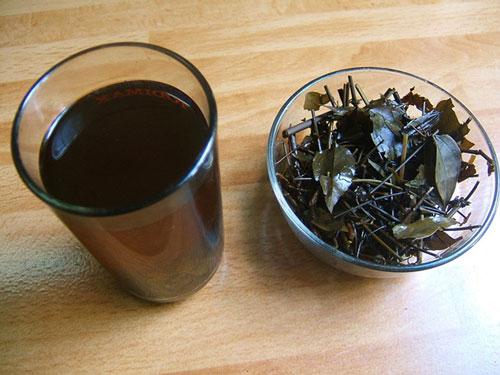 trà vằng chưa được chứng minh có tác dụng giảm cân